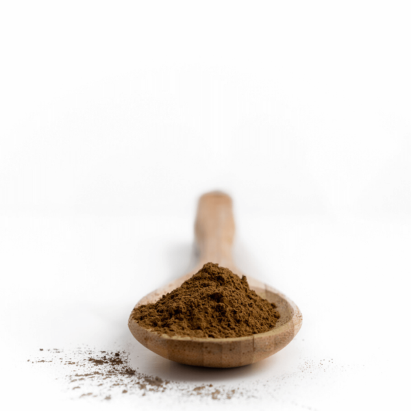 Chocolate Bentuangie Kratom Powder