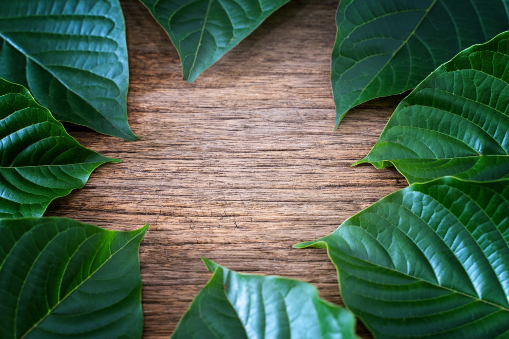 The Differences Between Kratom and CBD