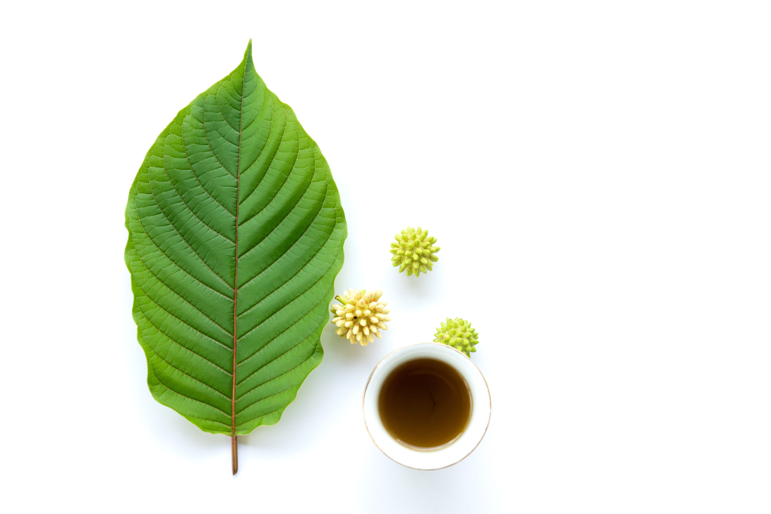 The Different Types of Kratom Extracts and Their Benefits